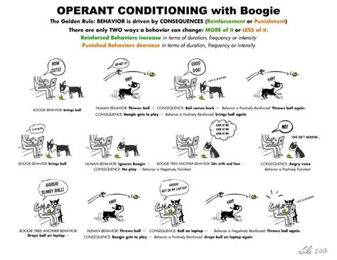 13 best images about operant conditioning on pinterest