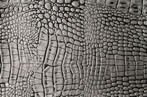alligator skin upholstery alligator 3267 modern upholstery fabric miami by