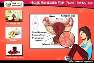 home remedies for a yeast infection top 3 scientifically proven home remedies for yeast