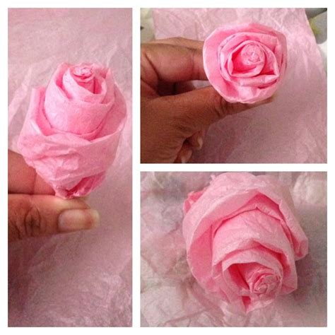 Roses With Tissue Paper - tissue paper pinned it did it