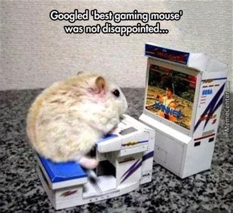 Mouse Meme - gaming mouse by fadood meme center
