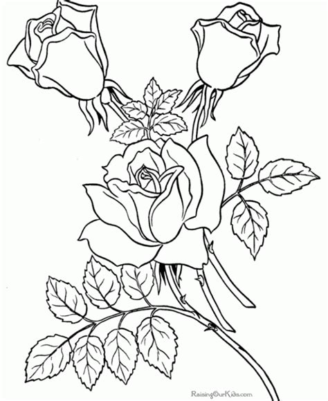 coloring pages for adults free printable color pages for adults coloring home