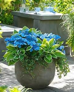 contain this how to create amazing container gardens balance design