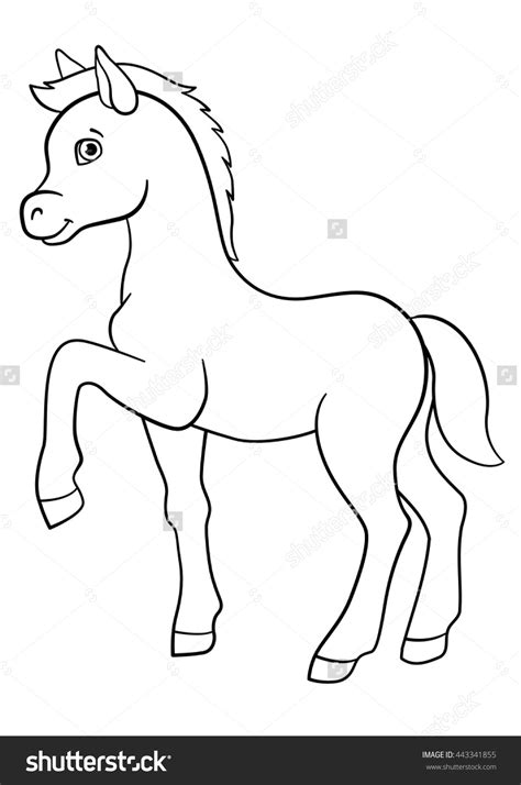 Coloring Pages Of Horses And Foals by Running Foal Printable Coloring Pages Horses
