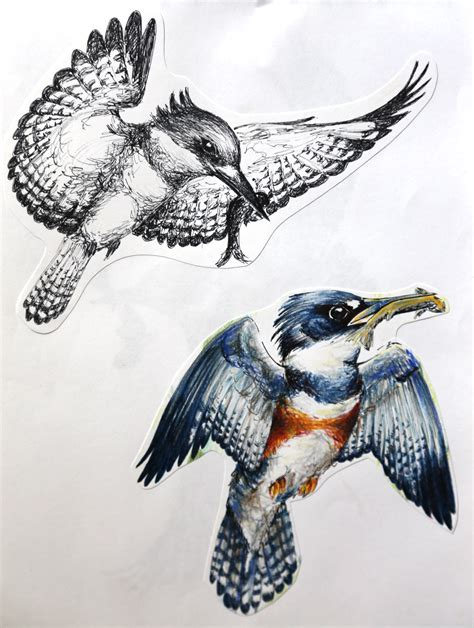 kingfisher tattoo designs murmuration