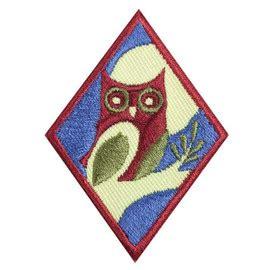 cadette woodworker badge cadette book artist badge