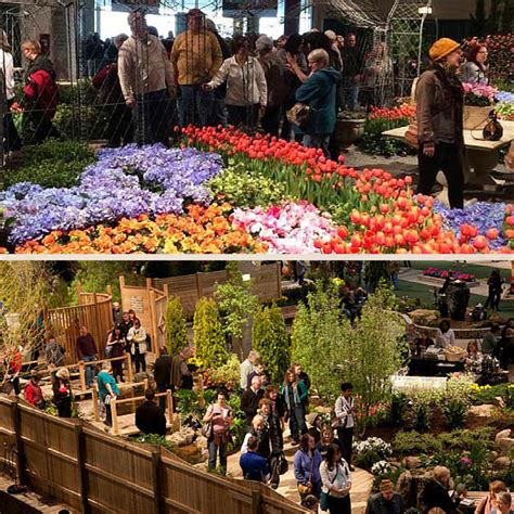 backyard shows tony abruscato chicago flower and garden show digging