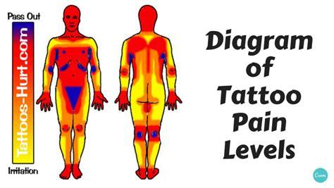 diagram  tattoo pain hotspots chart alltop viral