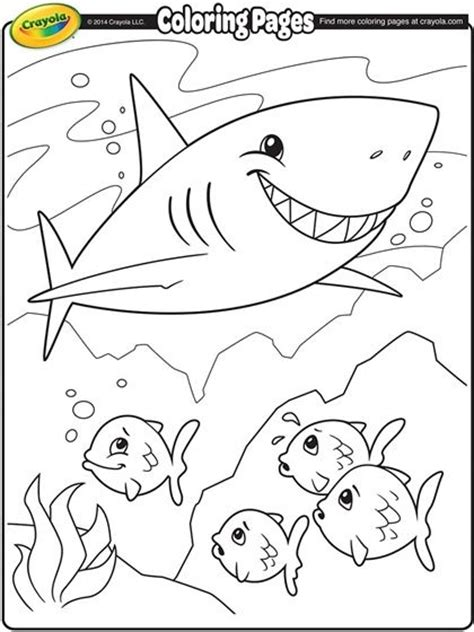 sharks a coloring book books shark coloring page we learn