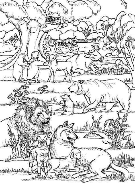 verloren tuinen van heligan e ebooks een site met heel veel bijbel kleurplaten de schepping