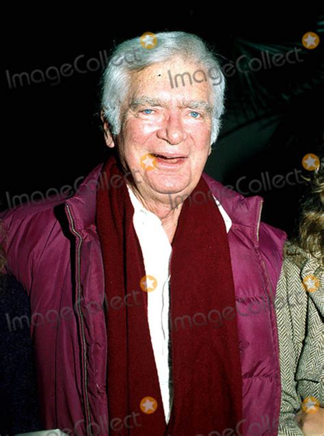 Buddy Sikat Kawat 3 Inc buddy ebsen pictures and photos