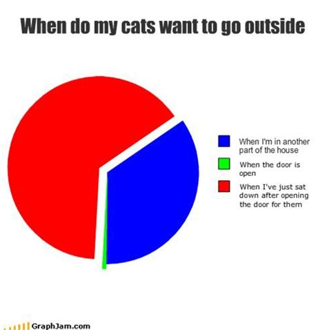 how to my to go outside when do my cats want to go outside humor