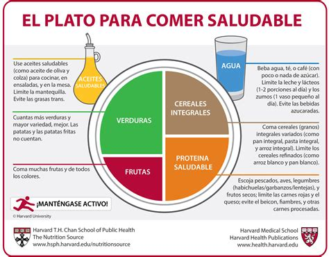 carbohydrates translate to el plato para comer saludable spain the