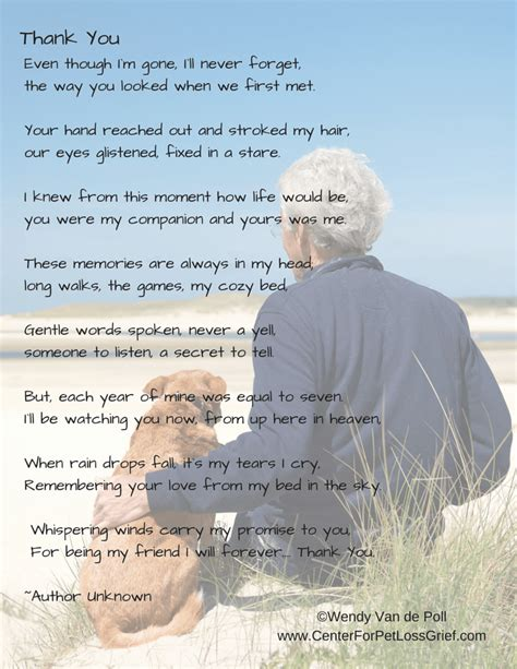 comfort during grief pet loss poems to support you center for pet loss grief
