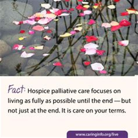living at the end of a hospice addresses the most common questions books 1000 images about dispelling the myths on