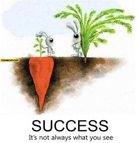 it s not the size of the success it s not always what you see carrot size starecat