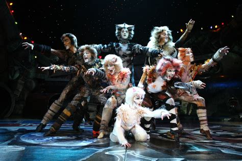 cats musical cats usa about musical