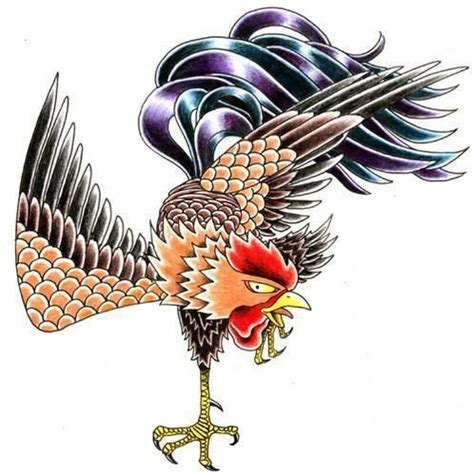 galo de combate pesquisa google galo pinterest tattoo