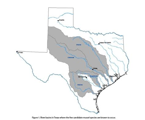 guadalupe river map texas n johnson map of the study area in the colorado and guadalupe river basins warc