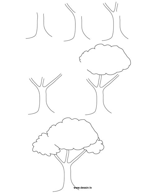 easy to draw tree how to draw trees step by easy sketch coloring page tree