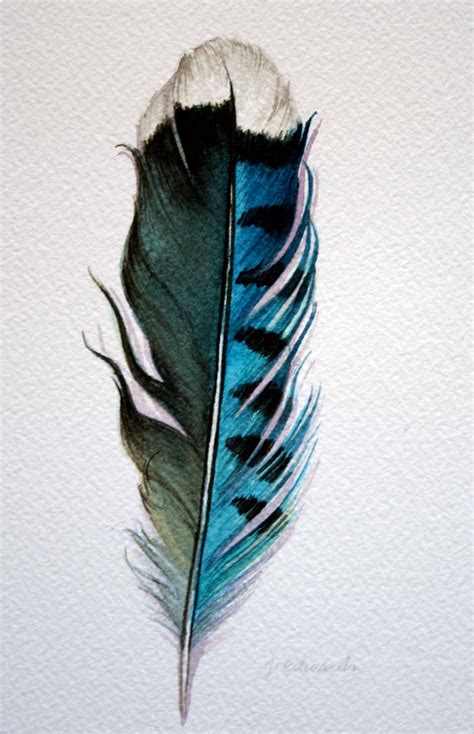tattoo feather jay original watercolor feather study 178 blue jay feather