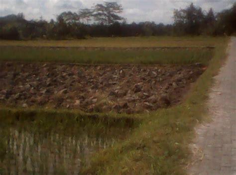 Jual Pomade Murah Di Jogja di jual tanah murah jogja depan bri ging jl wates km