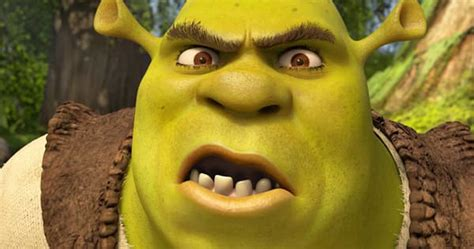 imagenes de ugly love this woman had shrek makeup on when she was pulled over by