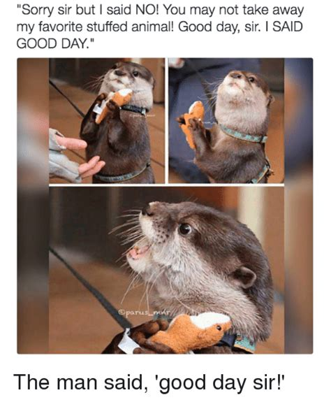 Good Day Sir Meme - 25 best memes about good day sir good day sir memes