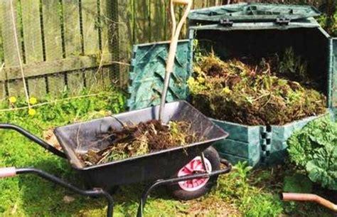 compostiera da giardino compostiera da giardino confronto dei migliori modelli