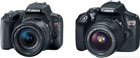 Should I Get the Canon EOS Rebel SL2 or Rebel T6?