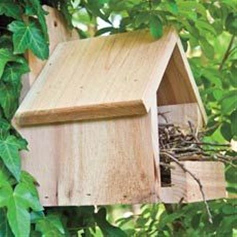cardinal bird house plans 1000 images about bird houses squirrel feeders bat houses on pinterest birdhouses