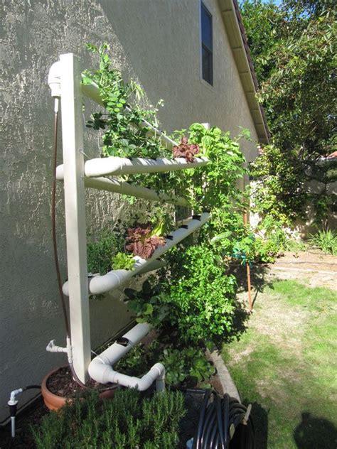 indoor diy hydroponic gardening images