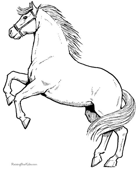 realistic horse coloring pages az coloring pages