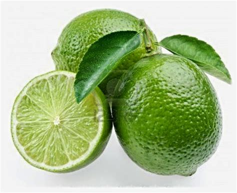 Buah Jeruk Nipis jeruk nipis manfaat jeruk nipis 187 terbaru 2016