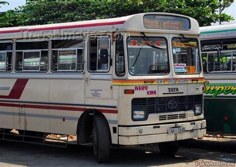 finally cng buses start plying  lahore newsarticlesmotorists education pakwheels forums