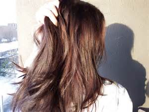 how to dye your hair with brown on the top half and on bottom half how to dye your hair dark brown using henna and indigo