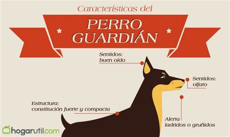 imagenes abstractas y sus caracteristicas caracter 237 sticas y razas de perros guardianes hogarmania