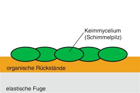 Schimmel Aus Silikon Entfernen 5800 by Schimmel Im Bad Die Richtige Schimmelbeseitigung Zum