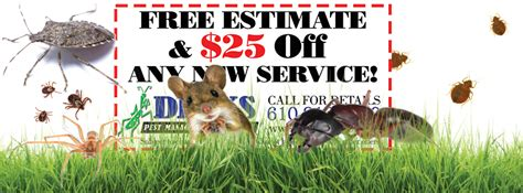 backyard flea control backyard mosquito flea and tick control dirks pest management