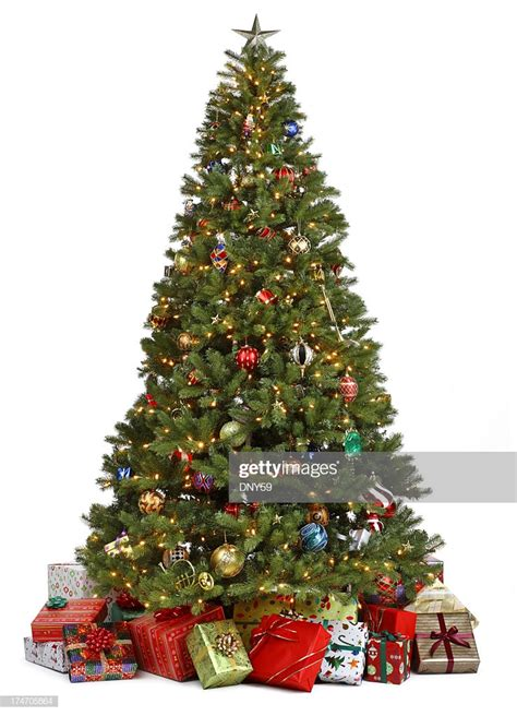 christmas tree surrounded  presents  white background