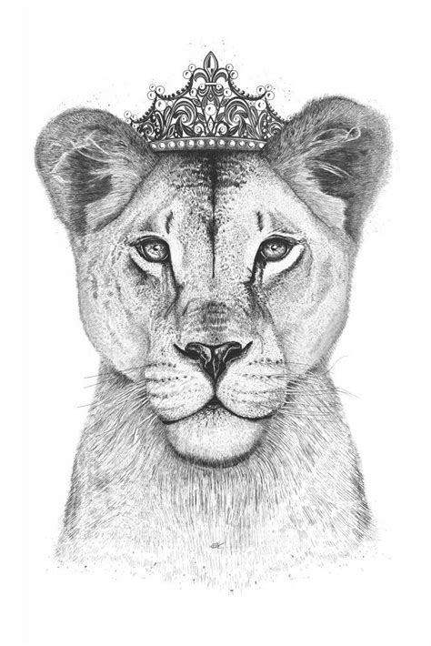 The lioness Queen | Poster | artboxONE | Lioness | Tattoo