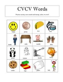 cvcv words worksheet by botash teachers pay teachers