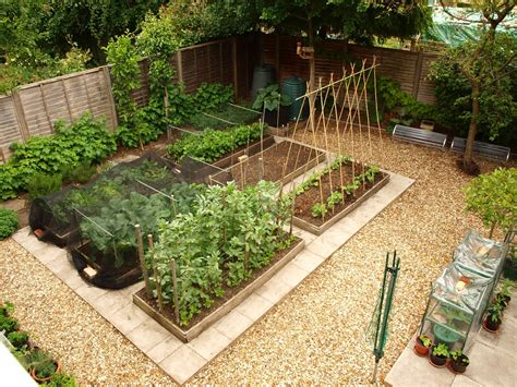 Layout Of Kitchen Garden S Veg Plot Allotment Controversies