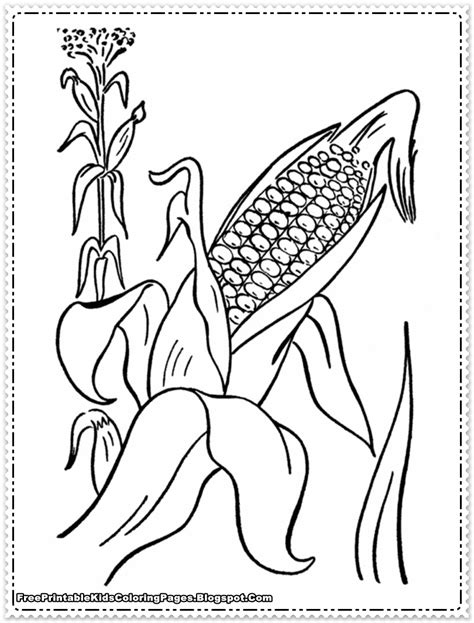 For Ear Of Corn Coloring Pages Corn Color Page