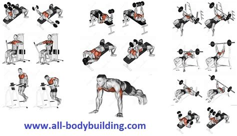 Increase Bench Press Routine 7 Exercises To Develop A Mighty Chest Fast All