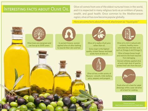 7 Different Uses For Olive by Unfolding The Facts About Olive Leonardo Olive