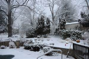 lessons from the winter garden of my discontent