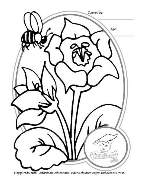 flower coloring book printouts flower printouts coloring home