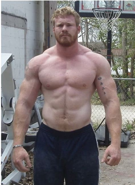 Park Bench Exercises 1000 Images About Power Lifting On Pinterest Dan Green