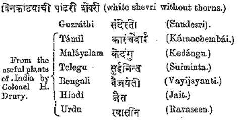 bungalow names in marathi image gallery marathi names